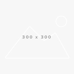 Board-Member-300×300